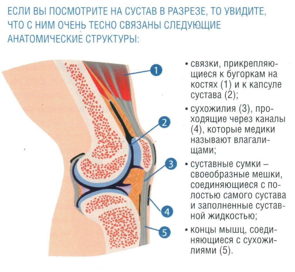 Клиники заболевания суставов в тюмени лечение суставов бобровой струёй